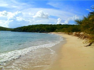 Vieques beach in the Spanish Virgin's