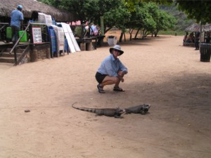 Linda checks out a pair of iguana's